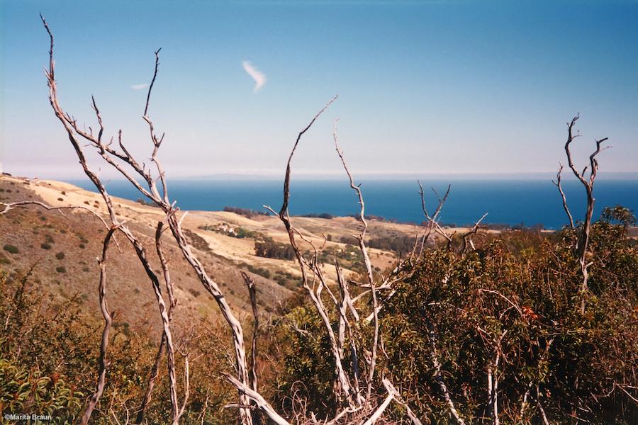Malibu Canyon Ocean View